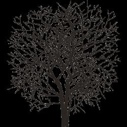 Baum-Tätowierung 3