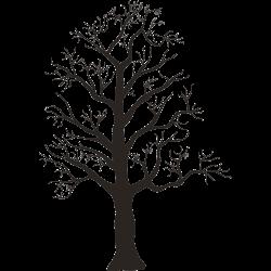 Blätterloser Baum im Winter