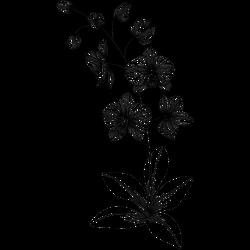 Blume Vorlage 6