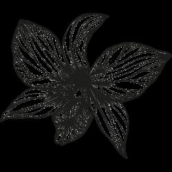 Motiv Blume 12