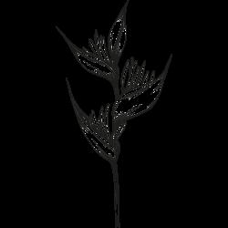 Blume-Tätowierung 14