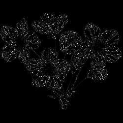 Blume Vorlage 17