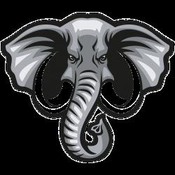 Grauer gefährlicher Elefant