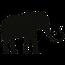 Motiv Elefant 34