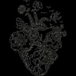 Vorlage Herz 4