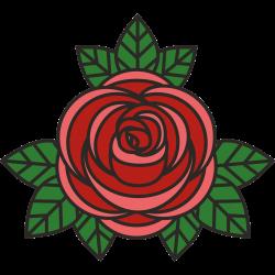 Rosenblüte mit drei Blättern