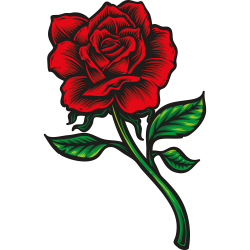 Rose Vorlage 6