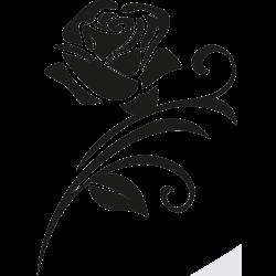 Motiv Rose 12