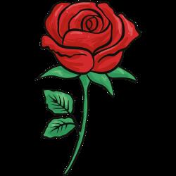 Rose-Tätowierung 25
