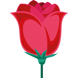 Motiv Rose 36