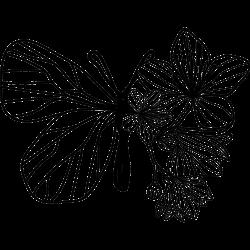 Schmetterling und Lilien