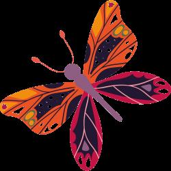 Schmetterling Vorlage 15