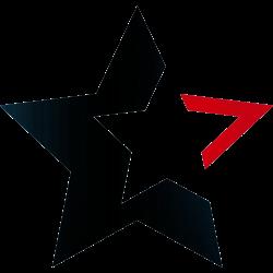Tattoo mit Stern 29