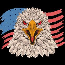 Adler mit amerikanischer Flagge